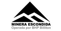 MEL-MINERA ESCONDIDA