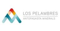 MINERA LOS PELAMBRERS